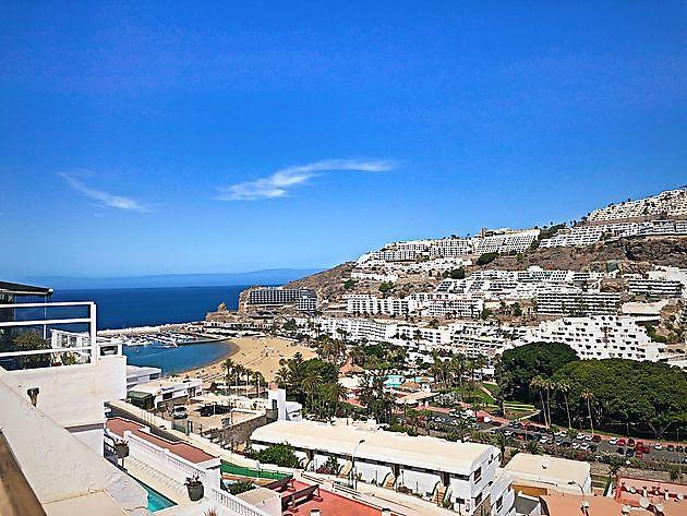 Studio LEOPARD ROCK WINTER SEASON Puerto Rico - Properties Abroad Gran Canaria